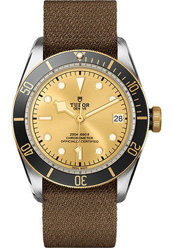 Tudor Watches - Black Bay Steel and Gold - Style No: M79733N-0006